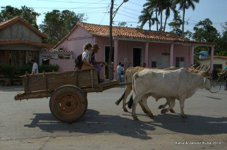 Kuba Vinales
